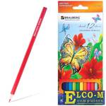 """Набор цветных карандашей BRAUBERG """"Wonderful butterfly"""" 12 шт 176 мм"""